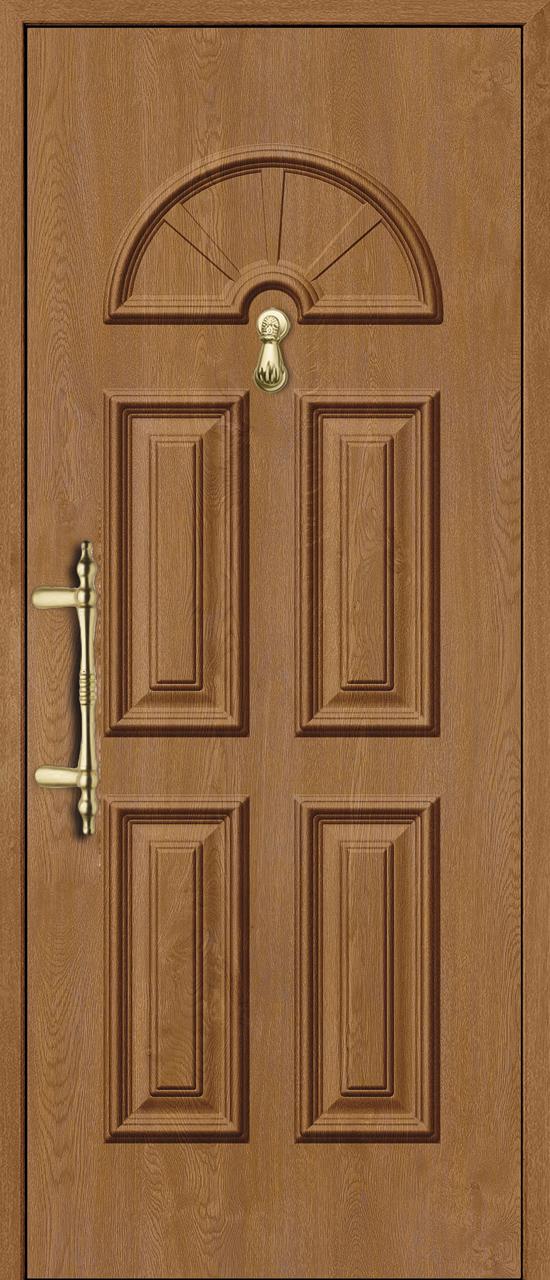 estega-puertas-avanza-olvia